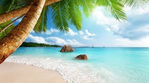 [3] The Beach