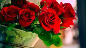 [5] Roses