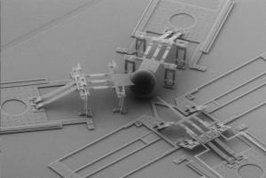 Nanoinjector