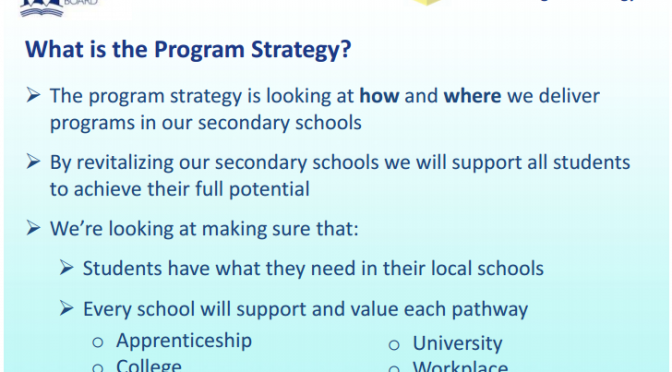 Director's Message: The Program Strategy