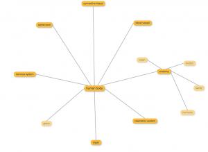instaGrok word web sample