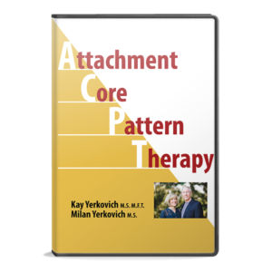 attachment-core-therapy-dvd-case