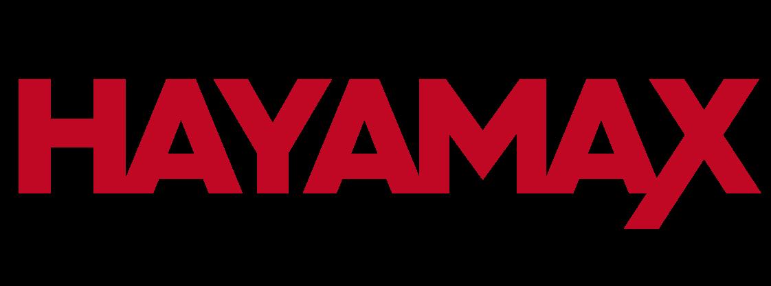 Logo do grupo Hayamax – Distribuidora de Produtos Eletrônicos
