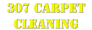 307 Carpet Cleaning