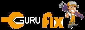 Guru Fix Inc
