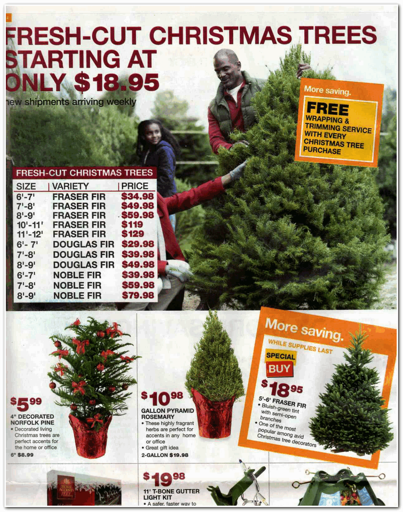 Rosemary Christmas Tree Home Depot.Home Depot 2009 Black Friday Ad Black Friday Archive Black