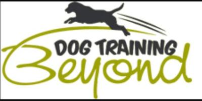 Dog Training Beyond, LLC