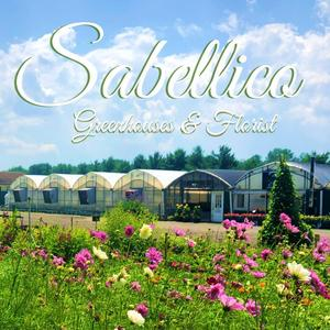 Sabellico Greenhouses & Florist