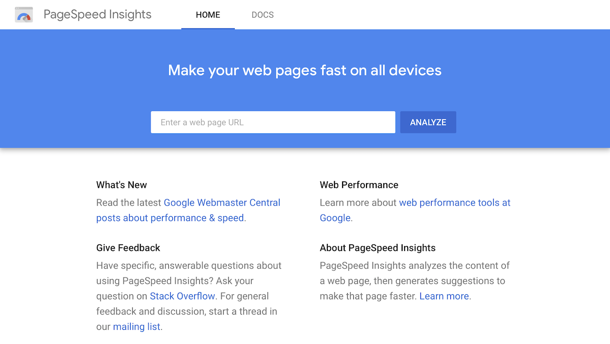 An image of Google PageSpeed Insights front page