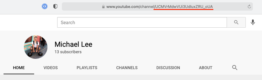 Screenshot of YouTube channel highlight the channel ID