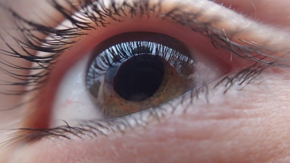 Eye Human Face Vision Look Person Eyeball Iris