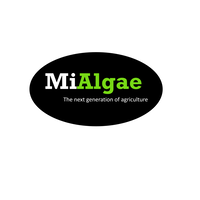 Standard_mialgae