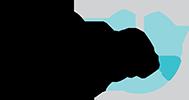 Standard_arzeda_logo