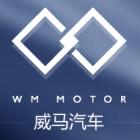 Standard_wm_motors