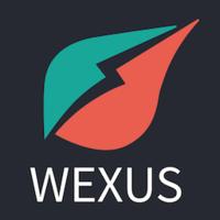 Standard_wexus_logo