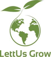Standard_lettus_grow