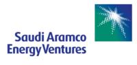Standard_saev_logo