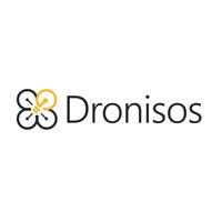 Standard_dronsos