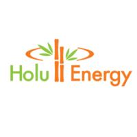 Standard_holu_hou_energy