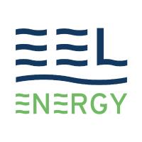 Standard_eel_energy