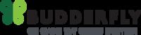 Standard_budderfly