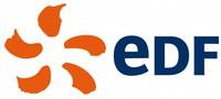 Standard_edf_logo_large