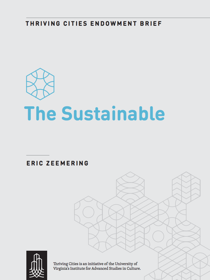 icheme sustainability metrics type pdf