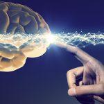 A Relação entre a Neurociência e Psicologia