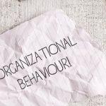 Quais os tipos de comportamento organizacional