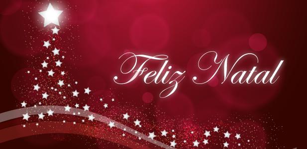 É Natal: Deixe florescer o seu melhor!