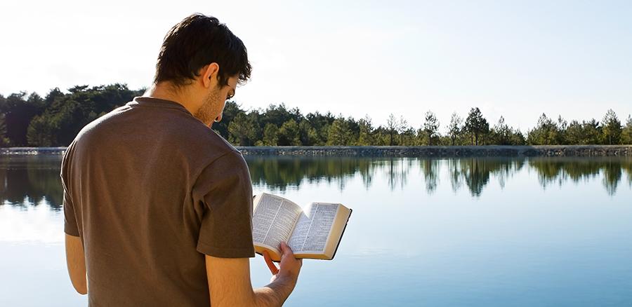 Qual é a diferença entre conhecimento e sabedoria