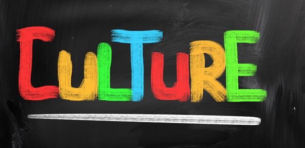 Importância da Cultura Organizacional de uma Empresa
