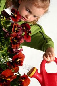 Você é o jardineiro da sua Vida