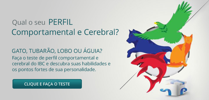 teste de perfil comportamental e cerebral IBC