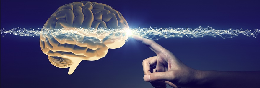 o que é neurociência