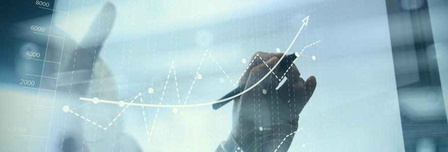 Organização Orgânica ou empresas mecanicistas? Como encontrar o equilíbrio na gestão?