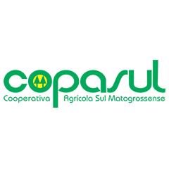 IBC realiza capacitação de lideranças na Copasul