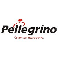 """Pellegrino – """"Sou funcionário, mas pode me chamar de cliente nº1"""""""