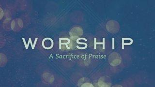 New Web Teaser 700X394 Worship 10 17 Compressor