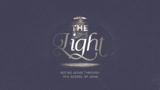 The Light Gospel Of John 11 17