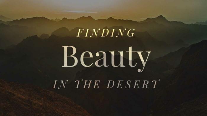 Beauty In Desert 700X394