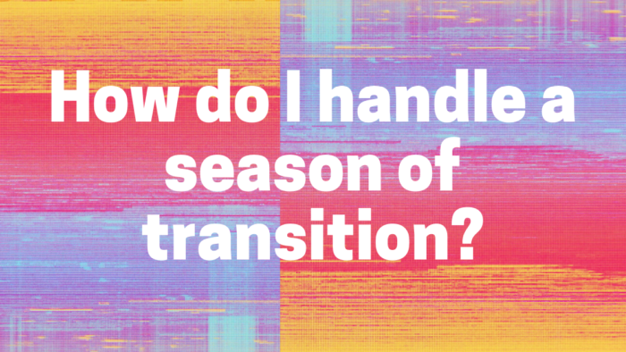 Season of trnasitions blog