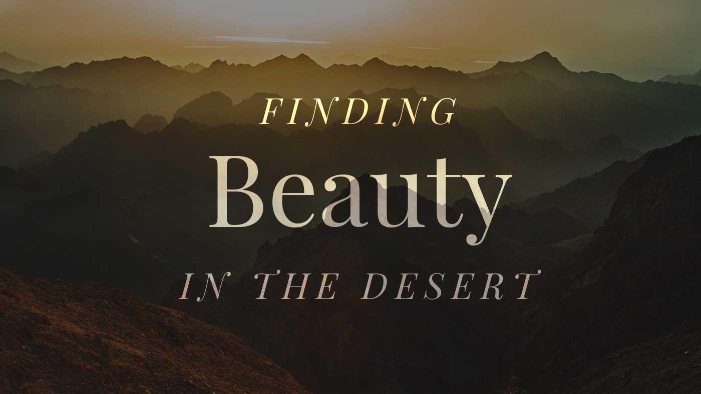 Finding Beauty in the Desert