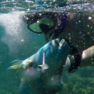 @Hawaiispearfish