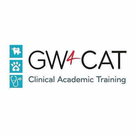 @gw4_cat