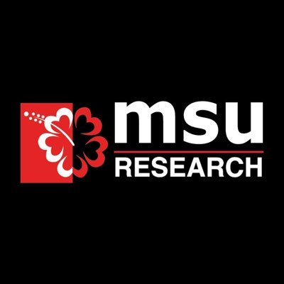 @researchMSU