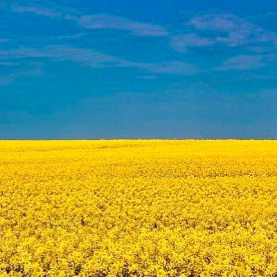 @uleadconference