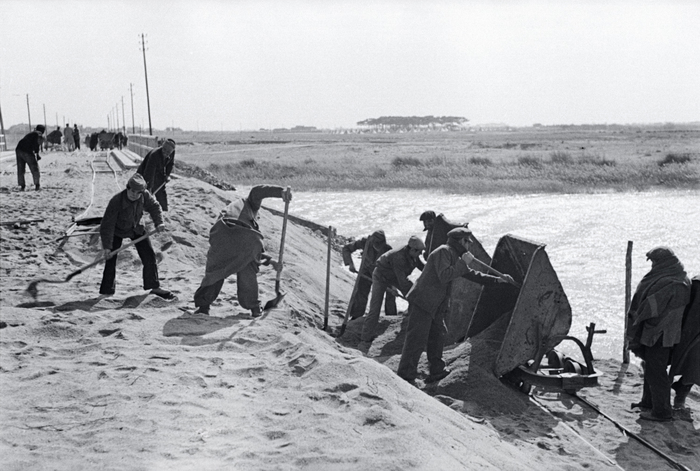 [Men working at an internment camp for Spanish refugees, Le Barcarès, France]