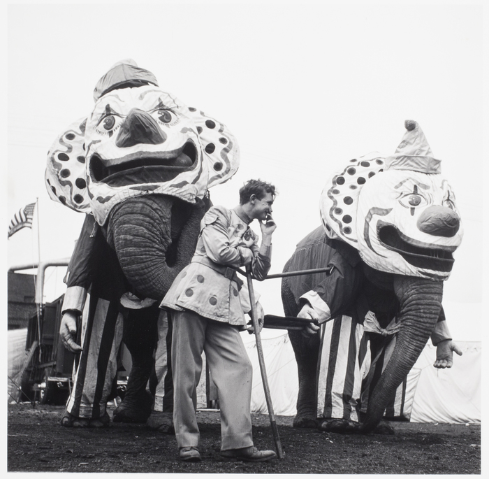 Circus Elephants at a Parade, Pennsylvania
