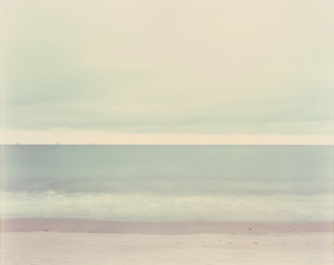 Richard Misrach | International Center of Photography